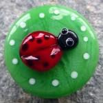 Ladybird by Helen Vanek